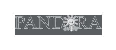 Associazione Pandora - Promotrice concorso
